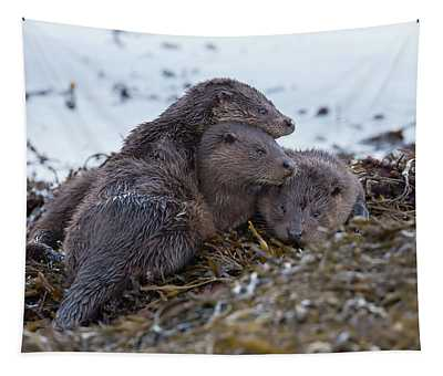 Otter Family Together Tapestry