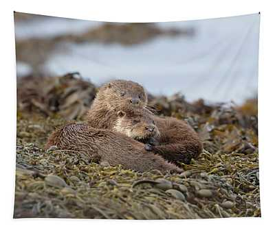 Otters Snuggled Tapestry