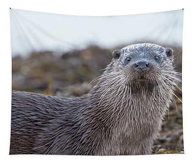 Otter's Whiskers Tapestry
