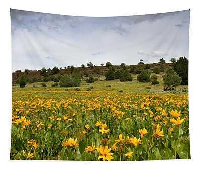 Owyhee Uplands Tapestry