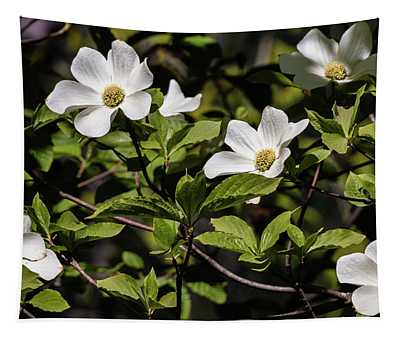 Pacific Dogwoods Tapestry