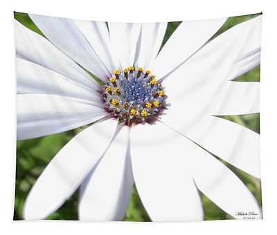 Page 13 From The Book, Peace In The Present Moment. Daisy Brilliance Tapestry