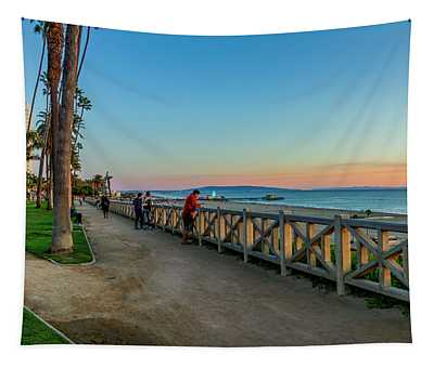 Palisades Park - Looking South Tapestry