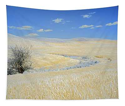 Palouse Tree Tapestry