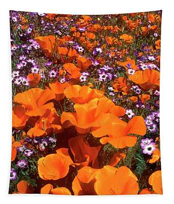 Panorama Califonria Poppies And Hollyleaf Gilia Wildflowers Tapestry