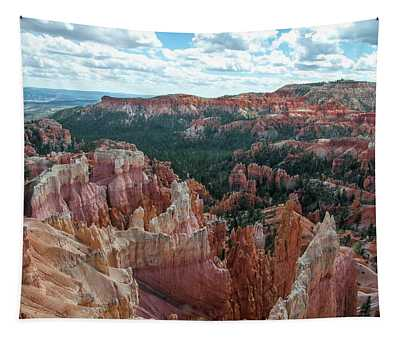 Panorama  From The Rim, Bryce Canyon  Tapestry