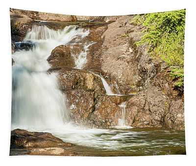 Paradise Falls-3 Tapestry