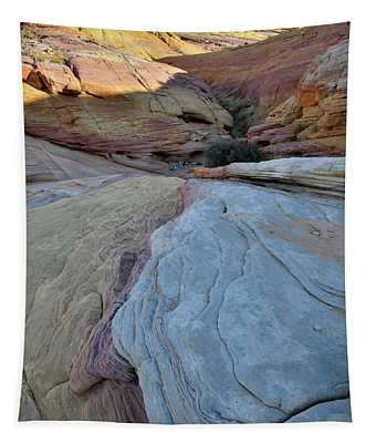 Pastel Canyon In Valley Of Fire State Park Tapestry