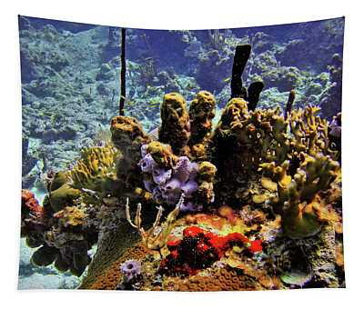 Patch Reef Bluff Tapestry