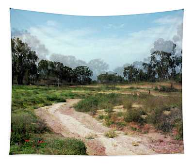 Path In Beeri Nature Reserve Tapestry