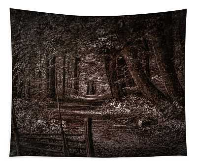 Path In Forest #i0 Tapestry
