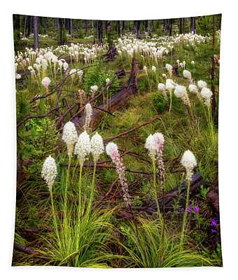 Pct Bear Grass Tapestry