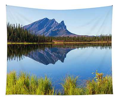 Peaceful Morning Tapestry