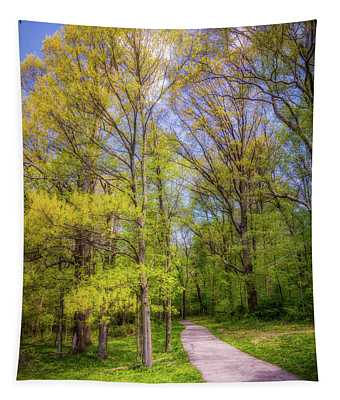 Peaceful Pathway Tapestry