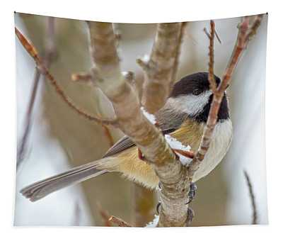 Peaceful Winter Chickadee  Tapestry