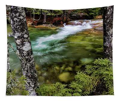 Pemigewasset River, Basin Trail Nh Tapestry