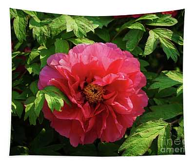 Peony Perfection In Pink Tapestry