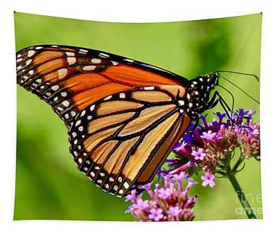 Perfect Monarch Tapestry
