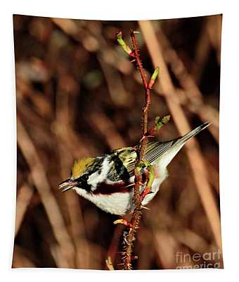 Perky Little Warbler Tapestry