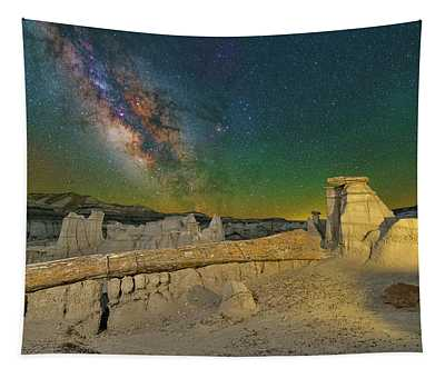 Petrified Tapestry
