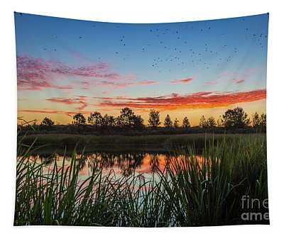 Phinizy Swamp Sunrise - Augusta Ga Tapestry
