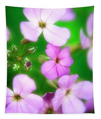 Phlox Flowers Tapestry