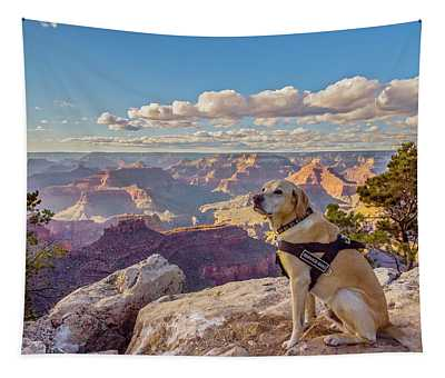 Photo Dog Jackson At The Grand Canyon Tapestry