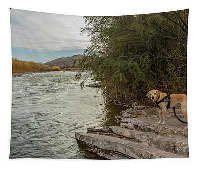 Photo Dog Jackson At The Rio Grande Tapestry
