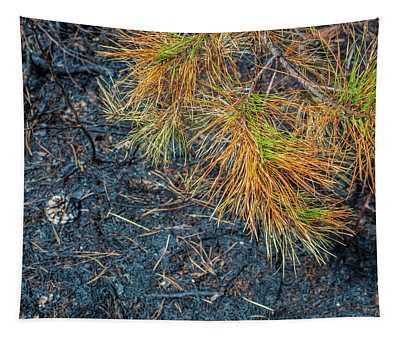 Pine Barrens Burn Tapestry