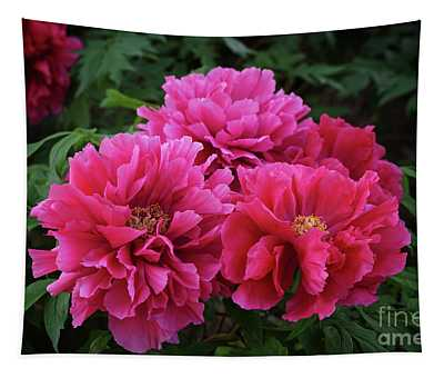 Pink Peony Cluster Tapestry