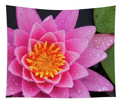 Pink Petals In The Rain  Tapestry