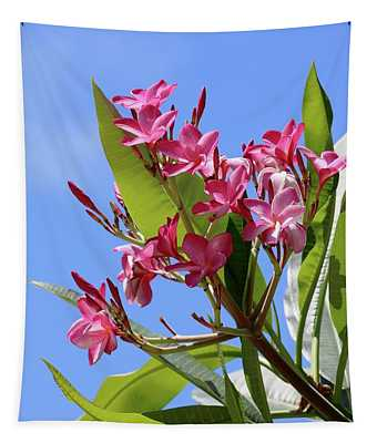 Pink Plumeria With Blue Sky Tapestry