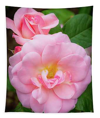 Pink Rose Study Tapestry