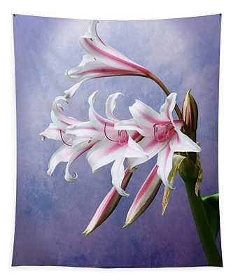 Pink Striped White Lily Flowers Tapestry