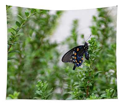 Pipevine Swallowtail Tapestry
