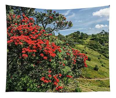 Pohutukawa Tree, Otama, Coromandel Peninsula - Waikato Tapestry