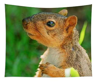 Pondering Squirrel Tapestry