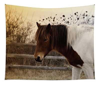 Pony Warm Up Tapestry