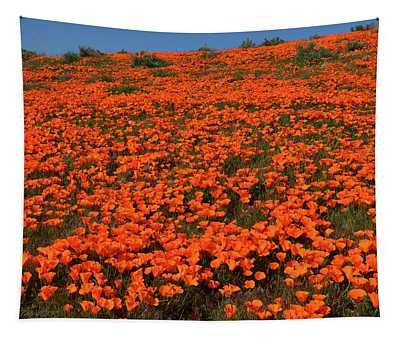 Poppy Hillside, Superbloom 2019 Tapestry