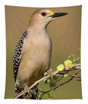 Portrait Of A Golden-fronted Woodpecker Tapestry