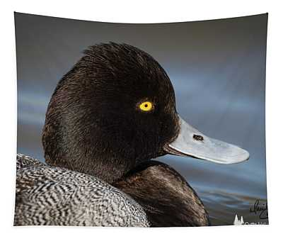 Portrait Of A Greater Scaup Tapestry