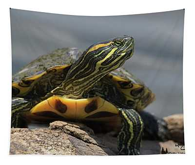 Portrait Of A Turtle Tapestry