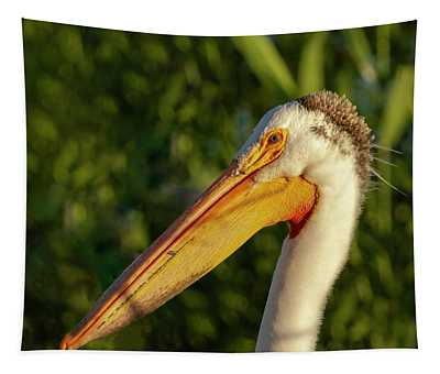 Portrait Of An American White Pelican 2014-2 Tapestry
