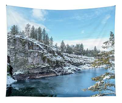 Tapestry featuring the photograph Post Falls Park In Winter by Matthew Nelson