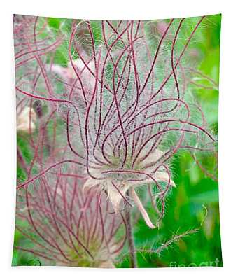 Prairie Smoke Tapestry