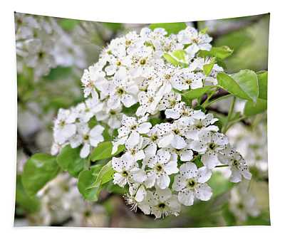 Pretty Pear Blossoms Tapestry