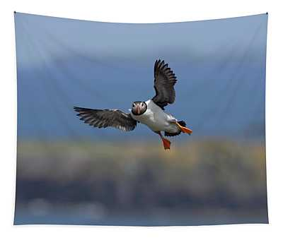 Puffin Flying Into Lunga Tapestry