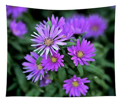 Purple Asters Tapestry