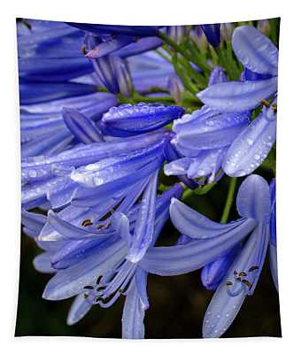 Rain Drops On Blue Flower II Tapestry