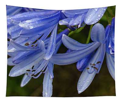 Rain Drops On Blue Flower Tapestry